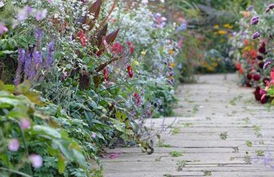 مسیرسازی در ویلا با گلهای رنگی