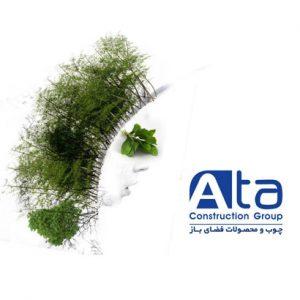 اهمیت ایجاد فضای سبز در محیط زندگی